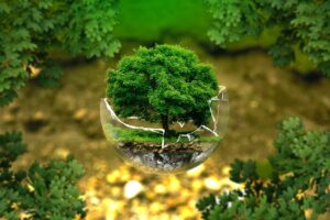 environmental-protection-